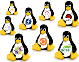 Какой дистрибутив Linux выбрать: ТОП 10