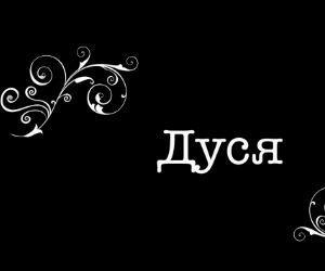Siri на русском для Андроид: Привет, я Дуся