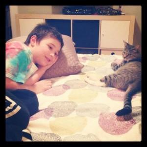 Дети получили 100 000 лайков в Facebook и стали обладателями кошки