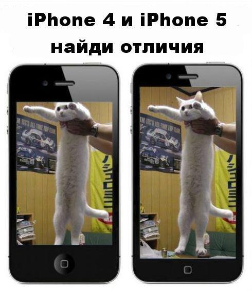Все что вам необходимо знать об iPhone 5: кота стало больше