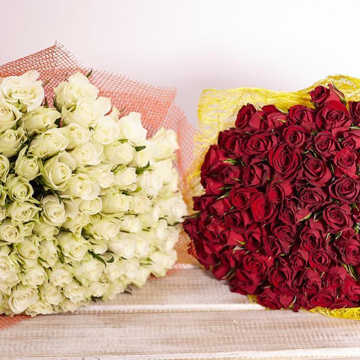 Какие розы подарить девушке: красные или белые