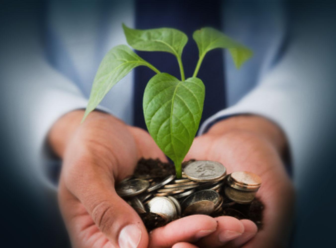 Как найти инвестора для бизнеса и предупредить недостаточную капитализацию