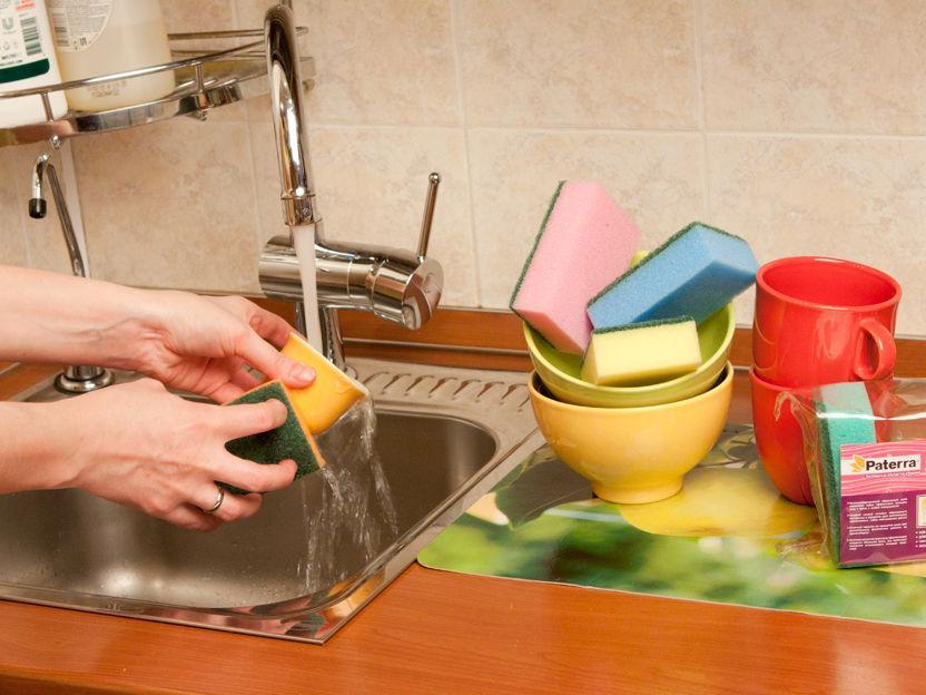 Как очистить губку и удалить с нее всех бактерий