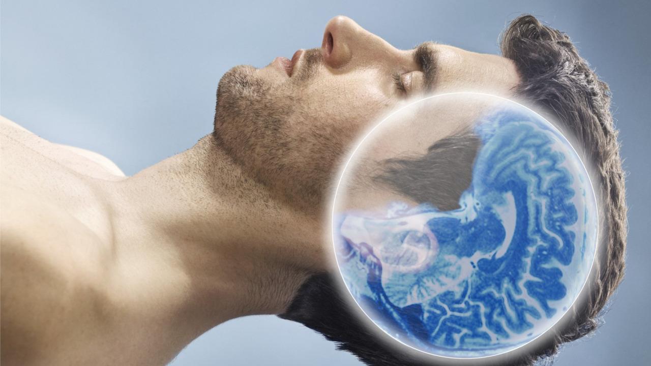 Можно ли умереть, если долго не спать? И чем мы рискуем, переходя на режим круглосуточной работы